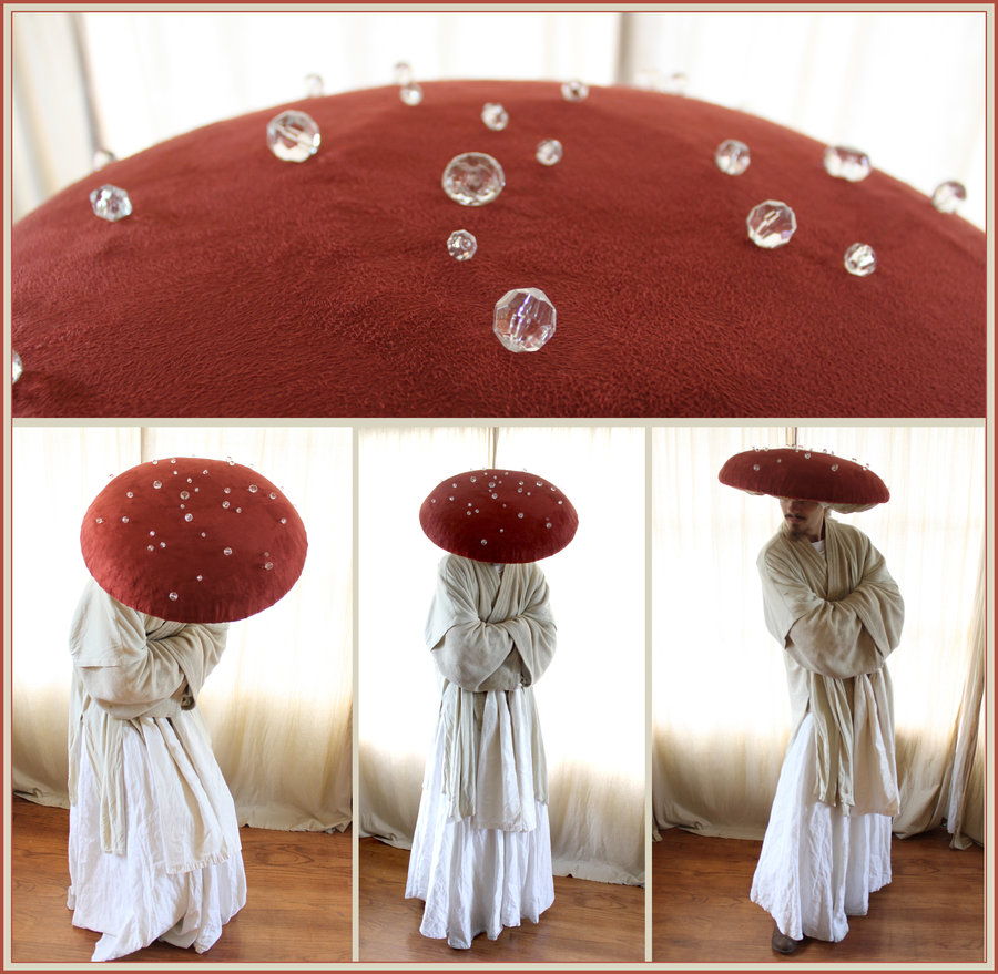 fantasia_dancing_mushroom_costume_by_aelthwyn-d4gd98v.jpg